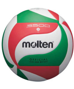 Volleyball, Molten V5M3500